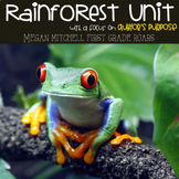 Rainforest for Primary Teachers