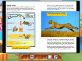Reading - Food Chains and Webs