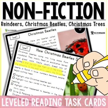 Reindeers, Christmas Beetles, Christmas Trees NonFiction R