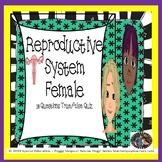 Reproductive System Female Quiz/Homework/Assessment SPED/OHI/ELD