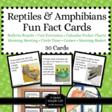 Reptiles and Amphibians Fact Cards