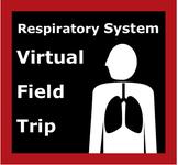 Respiratory System / Lung Virtual Field Trip