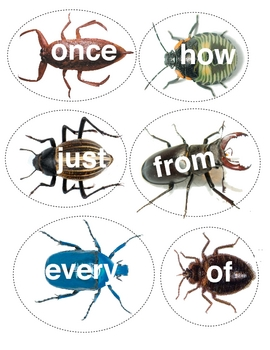SMACK-A-BUG Sight Word Game
