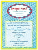 Shape Hunt - Shape Hunt