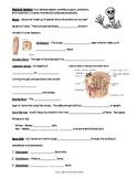 Skeletal System - Bundled Unit PDF