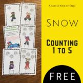Snowflake Math Freebie