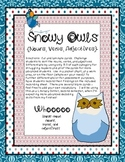 Snowy Owls {Nouns, Verbs, Adjectives} Sort