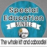 Special Education BUNDLE: The Whole Kit & Caboodle!