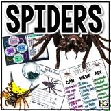 Spiders: A Creepy Crawly Extravaganza