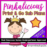 Super Speedy Sub Plans!  2 days of Activities & Projects t