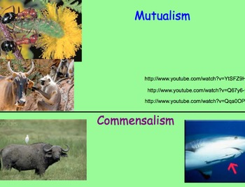 Symbiotic Relationships - Lesson Plan, Presentation, Video