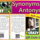 Synonyms & Antonyms QR Code Activity {Self-Checking iPad,