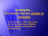 Synonyms and Antonyms: Word Wisdom