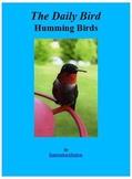 The Daily Bird:   Hummingbirds