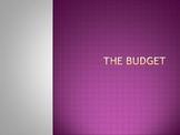 The FFA Recordbook Budget