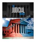 The Judiciary Branch - Flipped Classroom