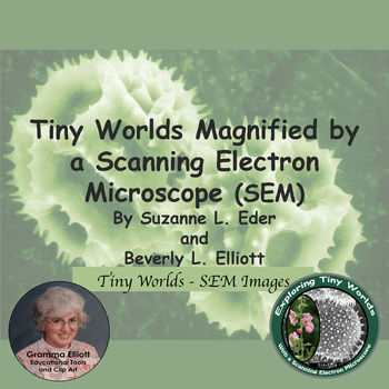 Tiny Worlds Magnified by a Scanning Electron Microscope - An Assortment - STEM
