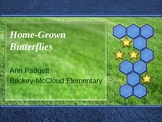 Treasures Vocabulary Power Point for Home Grown Butterflies