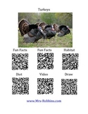 Turkey Facts and Writing Organizer