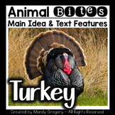 Turkeys: Teaching Main Idea and Text Features with an Info
