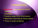 Types and Characteristic of Bacteria - Grade 11 college le