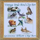 Bird Clipart - Vintage Style