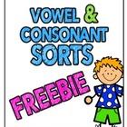 Vowel & Consonant Sorts {Cut and Paste Fun}