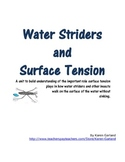 Water Striders and Surface Tension
