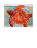 Watercolor Project Pack - Loggerhead Turtle
