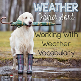 Weather Word Sort - Common Core Aligned