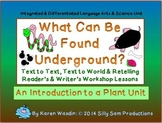 What Can Be Found Underground? Integrated Science & Langua