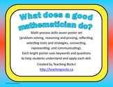 What Does a Good Mathematician Do? Math Process Skills Sev