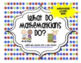 What do Mathematicians do? BUNDLE