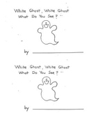 White Ghost, White Ghost What Do You See booklet