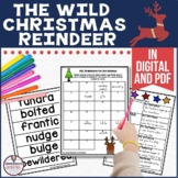 Wild Christmas Reindeer Guided Reading Unit by Jan Brett