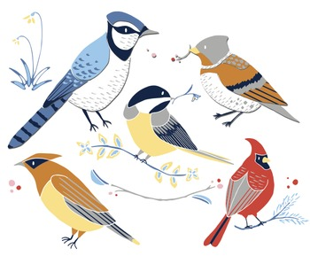 Winter Birds - Winter Bird ClipArt - Bird Clipart - Cardinal Clipart