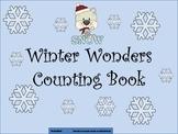 Winter Wonders Counting Book