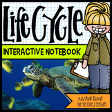 lifecycles interactive science notebook templates (plants,