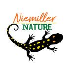 Salamander Ed